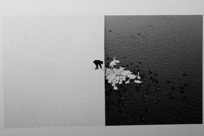 PR Camera Work 2017 - A man feeding swans in the snow - Foto di Marcin Ryczek